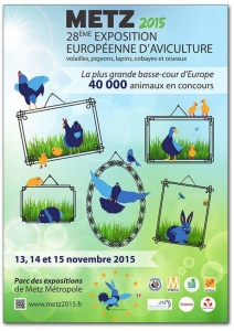 Zo zag het Affice er uit van de Europa show in Metz